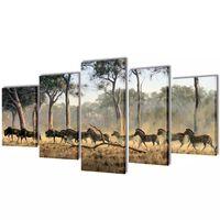 Nyomtatott vászon falikép szett zebrák 100 x 50 cm