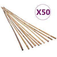 vidaXL 50 db kerti bambuszkaró 120 cm