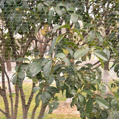 vidaXL 5 db 4x10 m PE madár elleni hálók