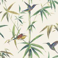 Noordwand ekrü kolibri és bambusz tapéta